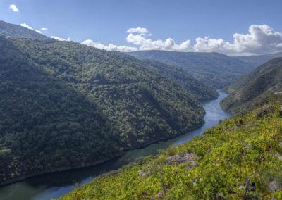 Canón del Río Sil