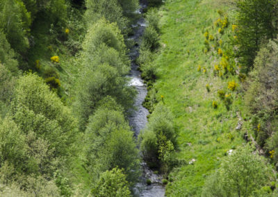 Río Selmo (5)